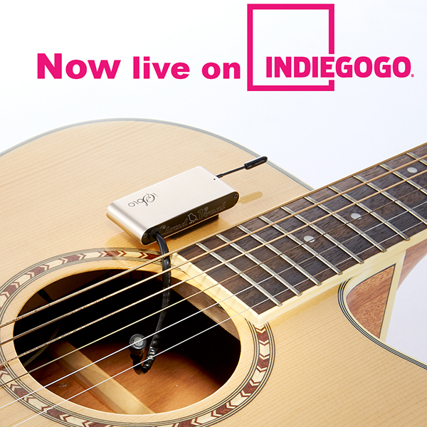 We are NOW live on Indiegogo!